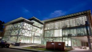 Translucent Polycarbonate Canopy Roof, Controlite - Lifestyle Working Brookvale Sydney